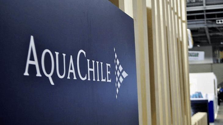 Autoridad Sanitaria detecta 74 casos covid-19 en plantas de AquaChile en Quellón