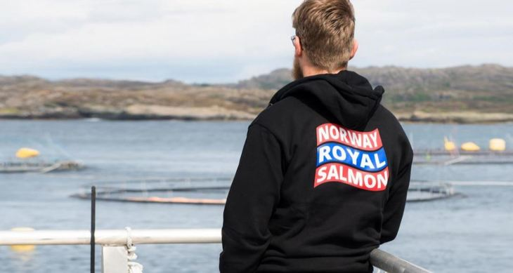 Norwegian salmon farmers end merger talks