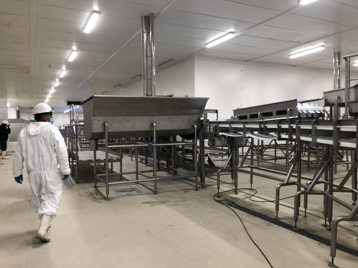 Nueva planta para proceso de salmón comenzará a operar en Magallanes