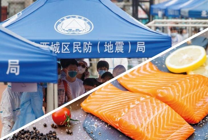 Autoridad china: No hay evidencia que el salmón haya causado un nuevo brote de covid-19