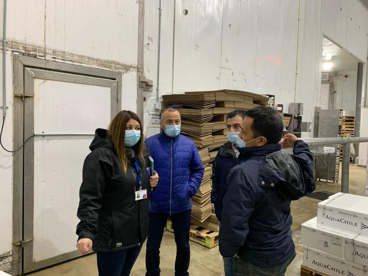 Operario salmonicultor entre los primeros casos de coronavirus en Quellón