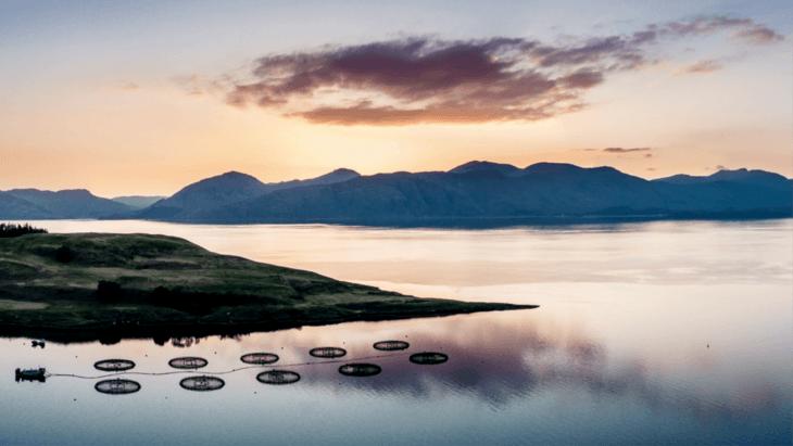 Escocia financiará proyectos para adaptar su acuicultura a la nueva normalidad