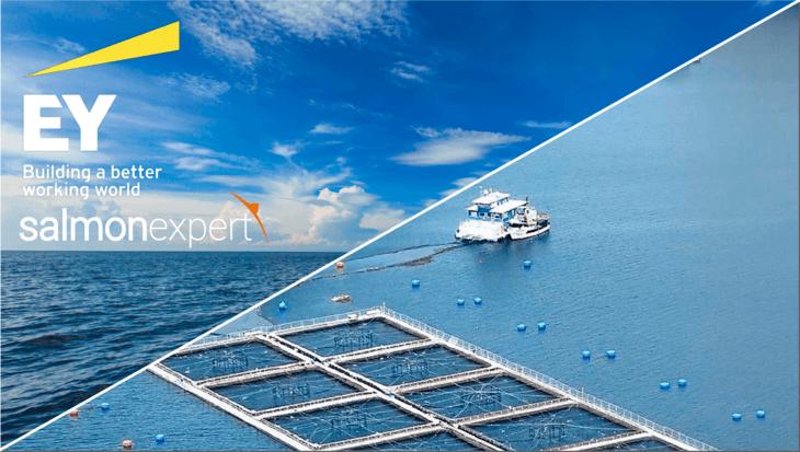 Encuesta de EY en alianza con Salmonexpert: ¿Cómo la industria acuícola enfrenta la pandemia?