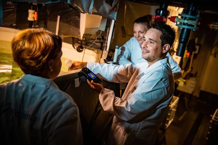 Estudian efecto de luz LED en rendimiento del salmón RAS