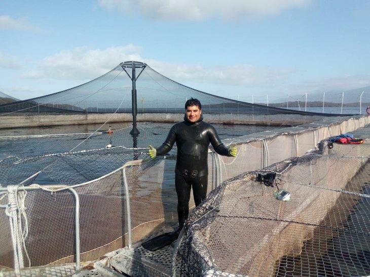 Buzos acuícolas proponen crear jaulas escuela para disminuir accidentabilidad
