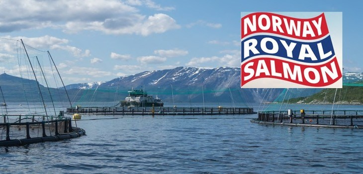 NTS aims for 100,000 tonnes with £516m offer for Norway Royal Salmon