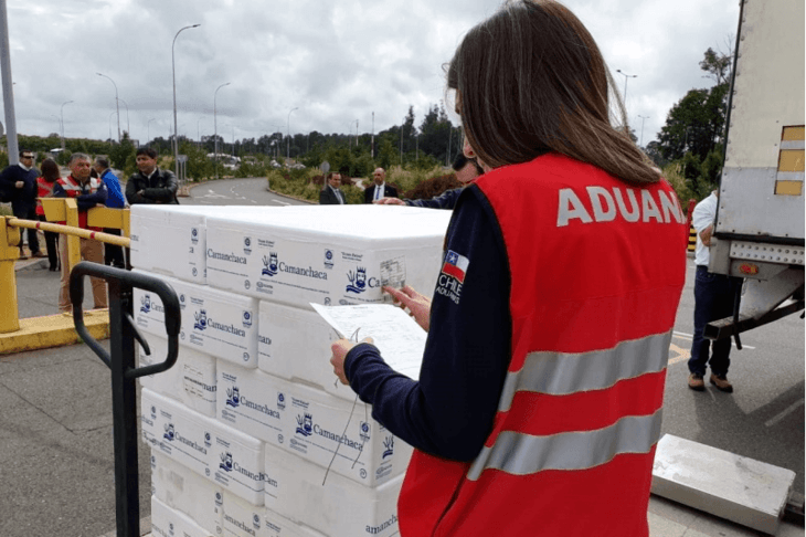 El proyecto para enviar directamente salmón chileno desde La Araucanía