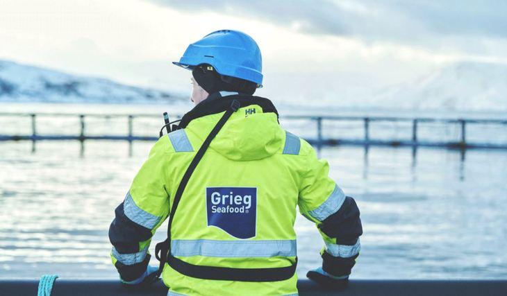 Grieg confirms Shetland sale talks