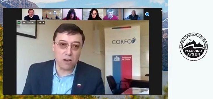 Core Aysén rechaza propuesta de Corfo para inyectar recursos a proveedores acuícolas