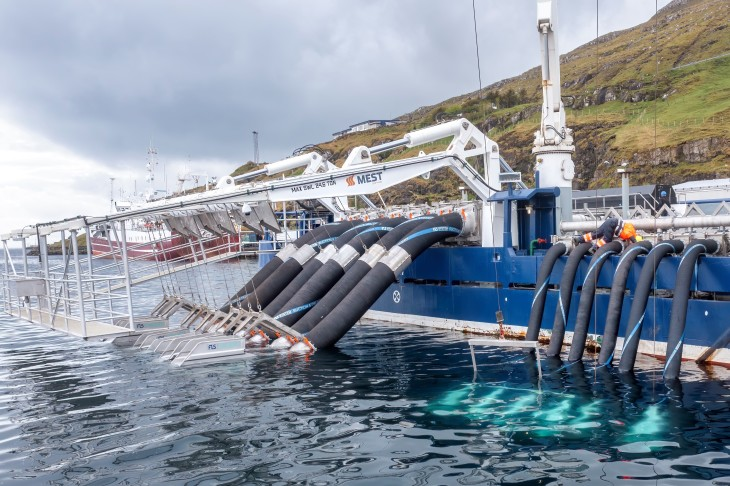 Demand for delousing systems boosts Flatsetsund revenue by 80%