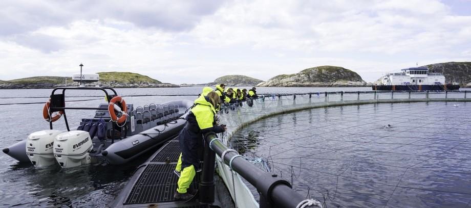 Turister får ett innblikk i hverdagen på merdkanten på visningssenteret til Bjørøya som arrangerer turer hele året. Foto: Bjørøya.