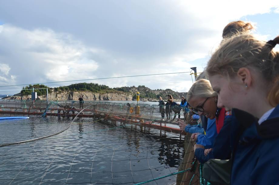 Seafood Trainee på Blom Visningsanlegg i Øygarden. Foto: Katarina Berthelsen.