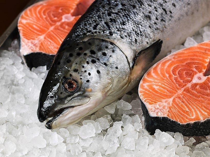 Imagen referencial de salmón.
