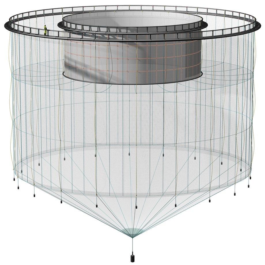 Figura 1. Ilustración de una jaula