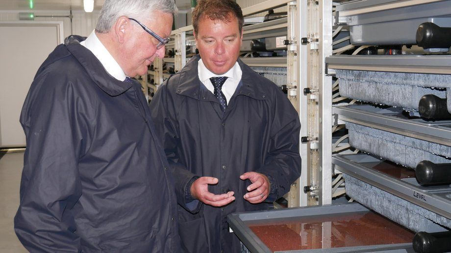 <p>MH Scotland MD Ben Hadfield shows Fergus Ewing a tray of eggs in the hatchery.</p>