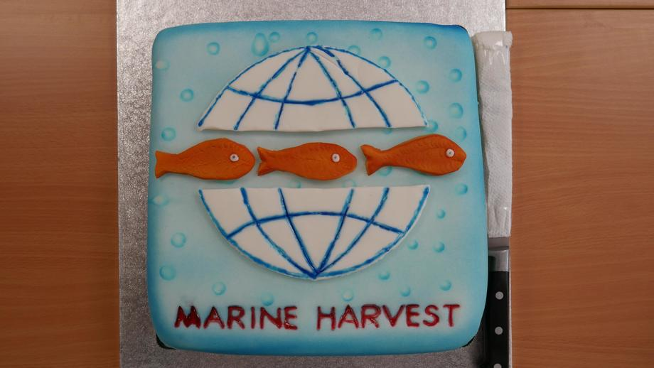 <p>A cake made by a local to mark the opening of the hatchery.</p>