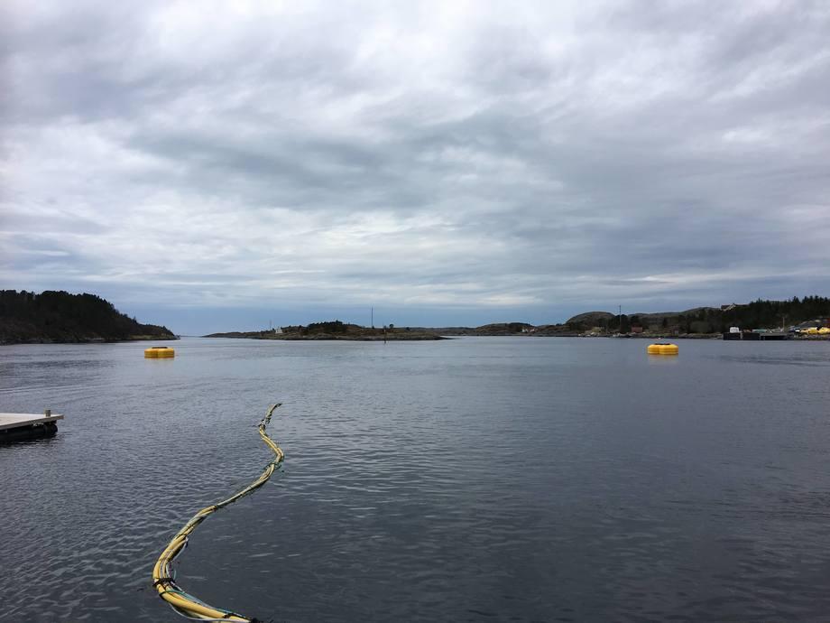 En testmerd er produsert og prosjektet tester nå de teknologiske løsningene på en lokalitet uten fisk som ligger tett ved Rørvik i Nord-Trøndelag. Her er testmerden i nedsenket posisjon.  Foto: AKVA group.