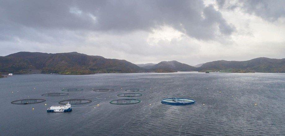 «Aquatraz»skal nå plasseres i rammefortøyning sammen med ordinære merder på MNH-lokaliteten. Rammefortøyningen på lokaliteten er forberedt for fire Aquatraz-merder. Foto: Midt-Norsk Havbruk.