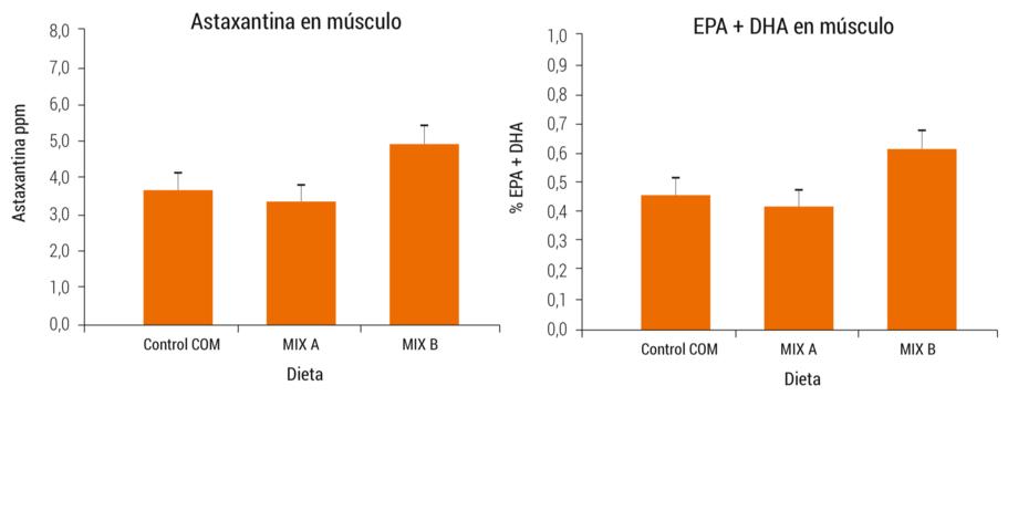 <p>Concentraci&oacute;n de astaxantina y EPA+DHA en el m&uacute;sculo de peces alimentados con las dietas experimentales durante el experimento 2.</p>