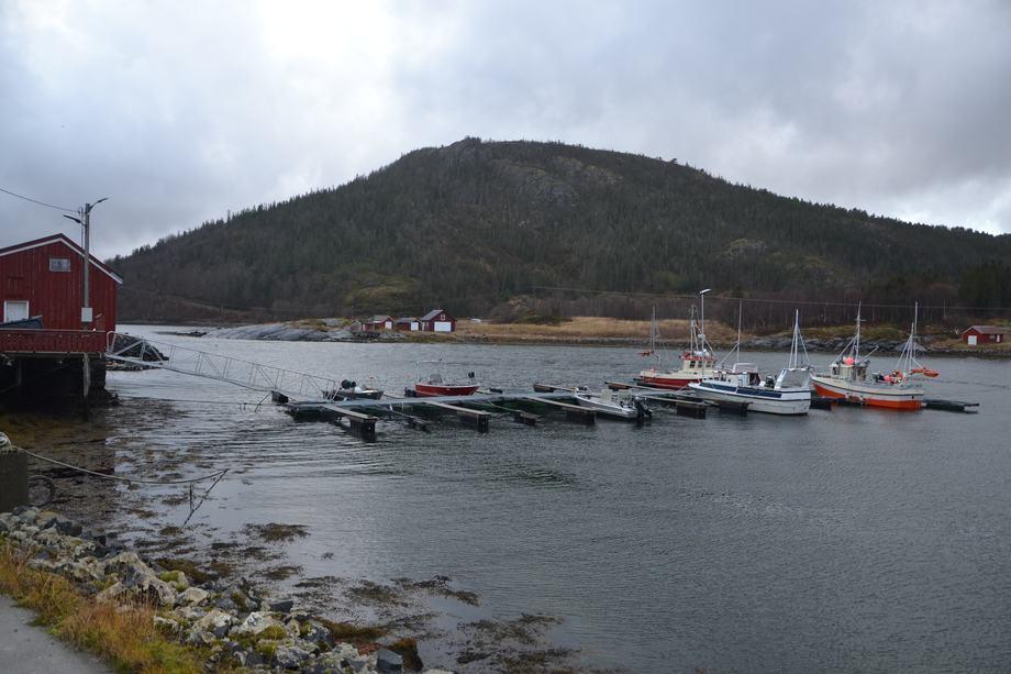 <p>Fra denne havnen tar det noen minutter å kjøre med båt ut til lokaliteten Eiterfjorden der Aquatraz ligger. Foto: Ole Andreas Drønen</p>