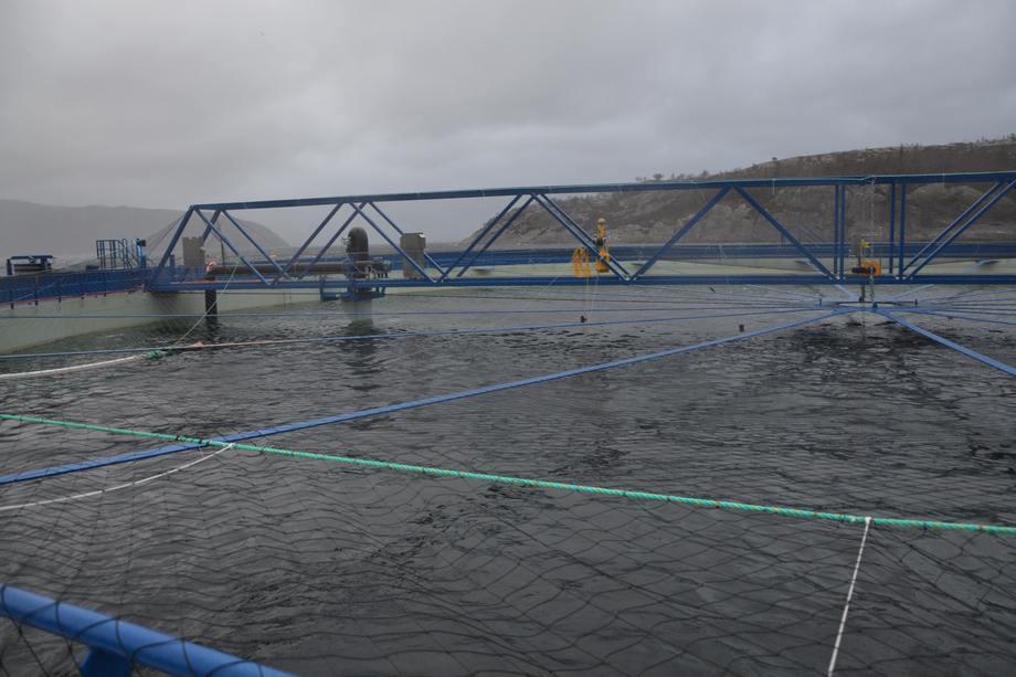 <p>Aquatraz-merden. Foto: Ole Andreas Drønen</p>