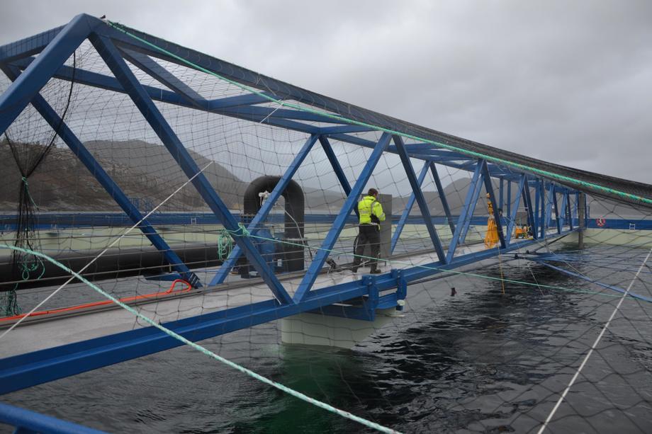 <p>På Aquatraz-merden er det en gangbro på midten, slik at man kan se direkte ned på fisken og følge med på den.</p>