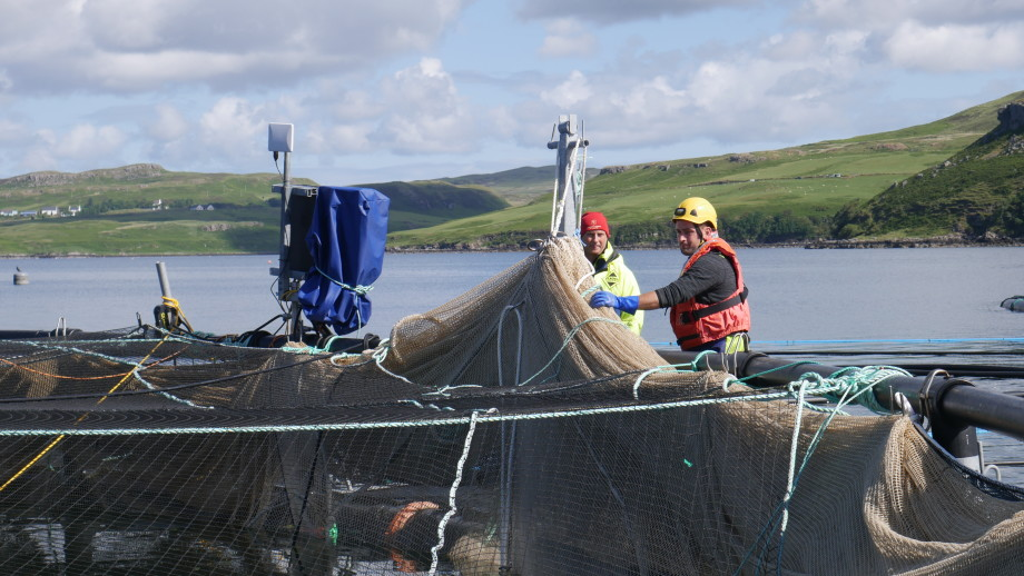 Mowi employees using winches to haul part of a Mørenot Scotland environet out of the water to dry at Portnalong, Skye. Photo: FFE.