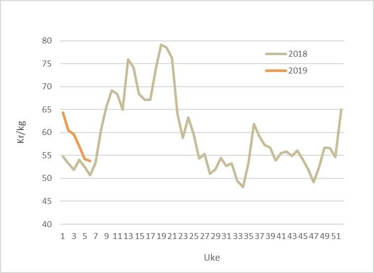 Spotpris på laks i 2019 (oransje) og 2018 (grå). Datakilde: Akvafakta.