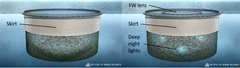 Ilustración de la jaula de control, a la izquierda y la jaula experimental con un pozo de agua dulce e iluminación en profundidad. Imagen: IMR.