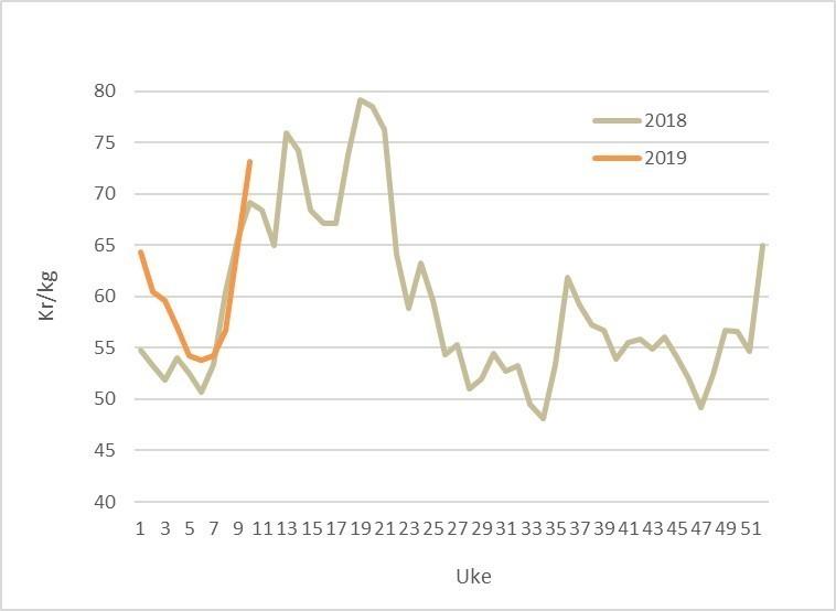 Spotprisen på laks i 2019 (oransje) mot 2018 (grå). Datakilde: Akvafakta.