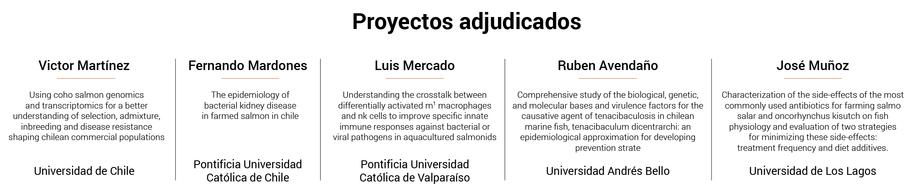 Proyectos Fondecyt adjudicados en 2019 para el área salmonicultura. Fuente: Fondecyt.