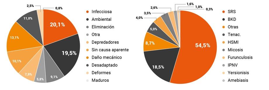 Distribución de mortalidad según causa primaria (a) y enfermedad (b) en salmón Atlántico. Fuente: Informe sanitario de salmonicultura en centros marinos año 2018.