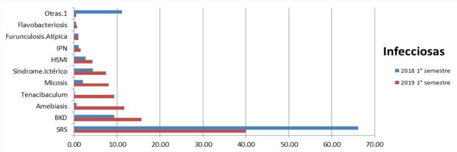 Mortalidades del salmón chileno, por causas infecciosas (haga click para agrandar y ver la imagen). Fuente: Sernapesca.