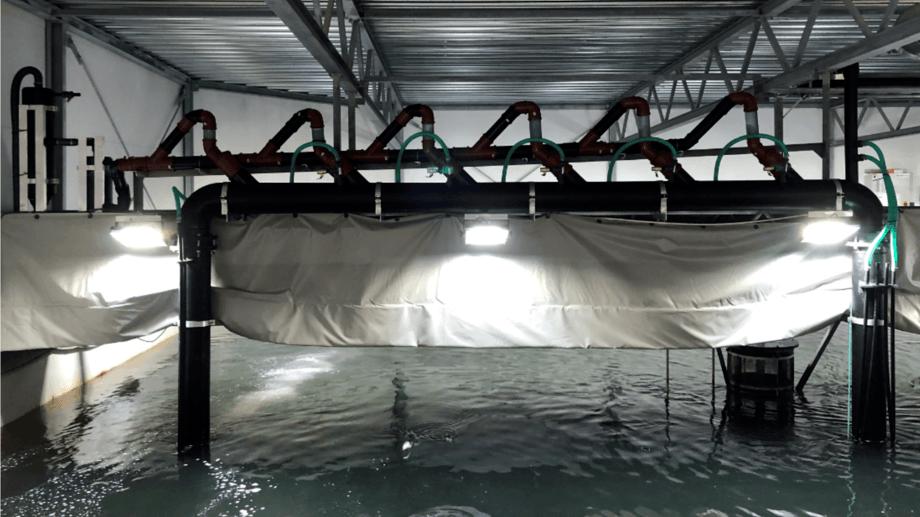 Bildet viser aquadukten installert i et eksisterende RAS anlegg, der den fjerner partikler og CO2, samt oksygenerer. Se også prinsippskisse i Figur 2.