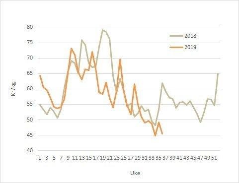Spotpris på laks i 2019 (oransje) mot 2018 (grå). Datakilde: Akvafakta.