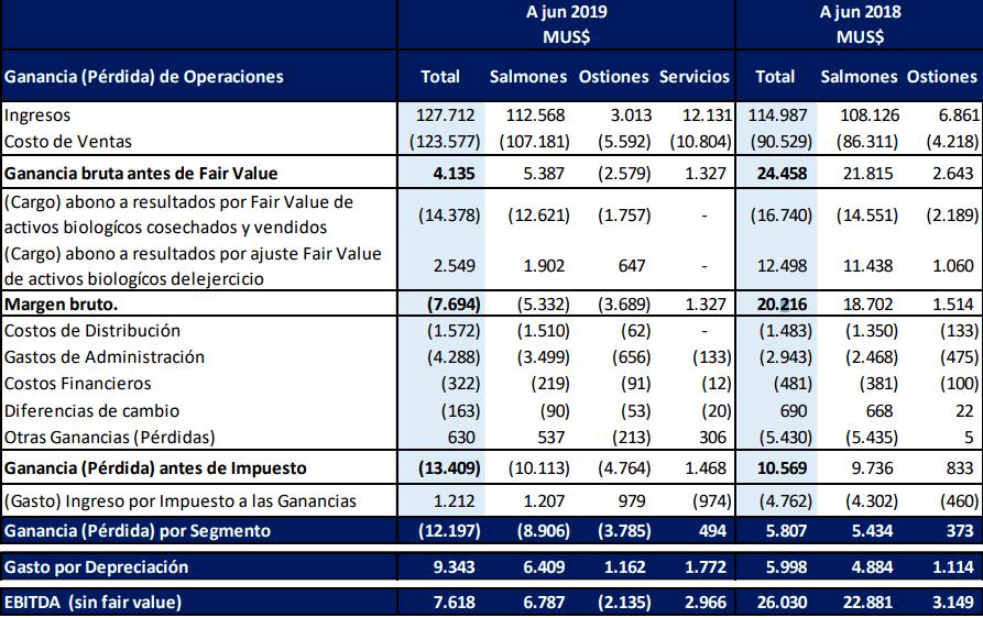Estado de resultados al primer semestre de 2019 de Invermar.