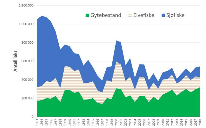 Mer gytefisk i elvene: Beregnet antall laks som årlig har kommet inn til kysten av Norge i perioden 1983 - 2018. Ser man på tabellen ser man en svak, men positiv trend som går oppover, der det er mer gytefisk i elvene. Figur hentet fra Vitenskapelig råd for lakseforvaltning.