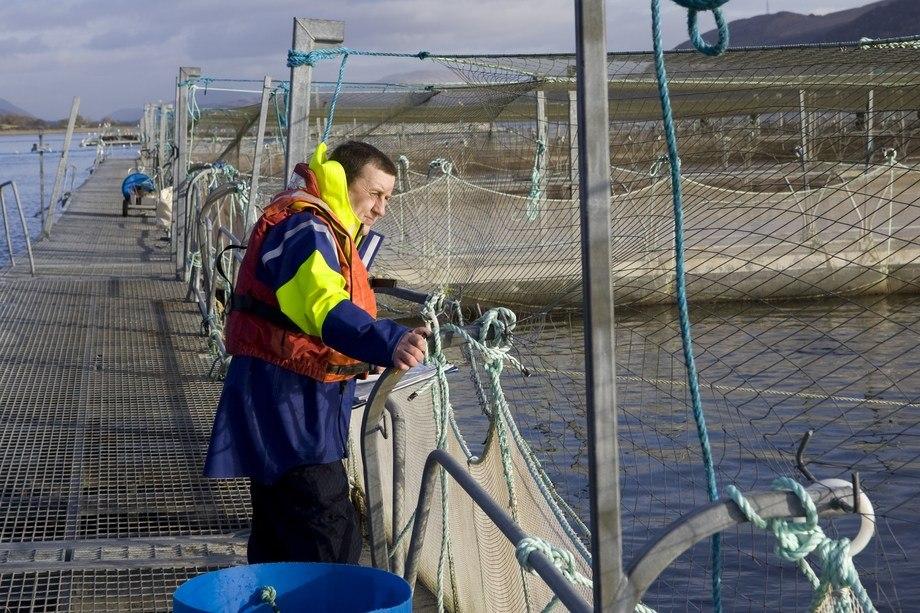 Malcolm Johnstone, aquaculture manager for RSPCA Assured, checks out a farm. Photo: RSPCA Assured.