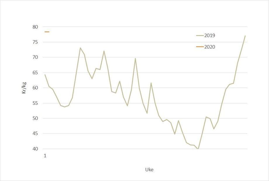 Spotprisen på laks i 2020 (oransje) mot 2019 (grå). Datakilde. Akvafakta.