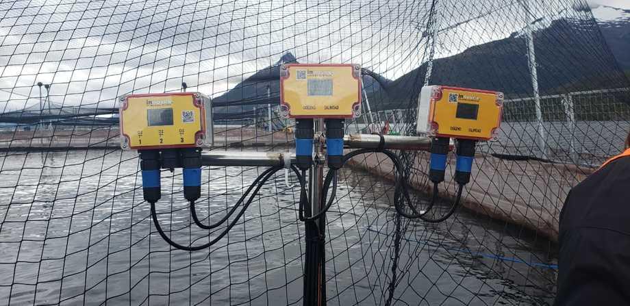 Tecnología para monitoreo en línea de la salmonicultura. Foto: SMA.