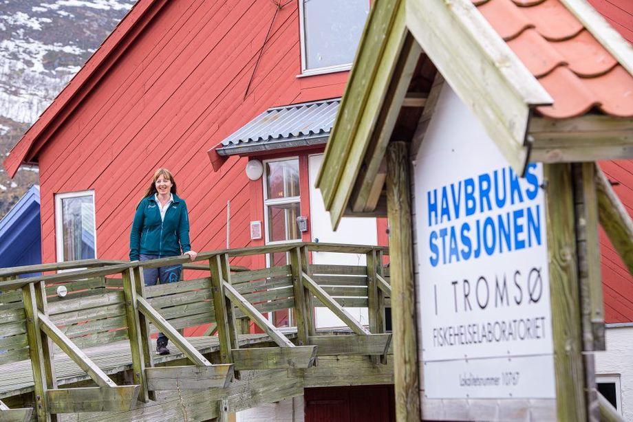 Fiskehelselaboratoriet på Havbruksstasjonen i Tromsø er en viktig samarbeidspartner for Mette Breiland. Det er Nofima som eier Havbruksstasjonen sammen med Universitetet i Tromsø – med halvparten hver. Foto: Lars Åke Andersen/Nofima