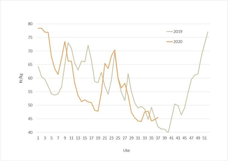 Spotprisen på laks i 2020 (oransje) mot 2017 (grå). Dataklide: Akvafakta