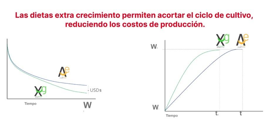 Las dietas extra crecimiento permiten acortar el ciclo de cultivo, reduciendo los costos de producción.