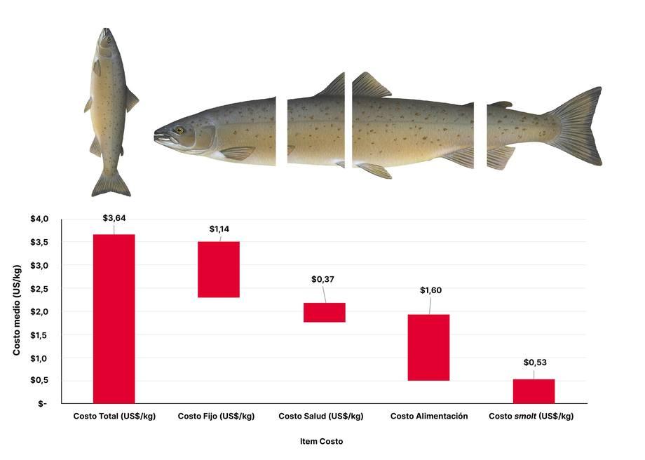Valores de costo medio de un centro (SFI, US$/kg), barra roja al extremo izquierdo con un costo total de 3,64 USD/kg y su descomposición por dimensión de SFI. A su vez cada dimensión puede ser analizada en los mismos términos de costeo por ítem, los cuales veremos en la tabla al final