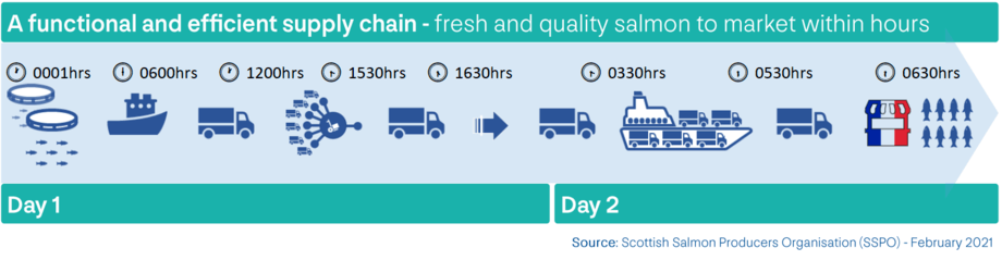 An illustration of the pre-Brexit Day 1 to Day 2 supply chain. Post-Brexit issues have disrupted this, sometimes resulting in Day 1 to Day 3 which can result in lost orders, failed deliveries and discounted product. Graphic: SSPO.