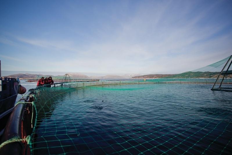 Gjennom SeaFurther-programmet vil Cargill samspille med havbruksnæringen og jobbe med bærekraftsmålene gjennom hele verdikjeden
