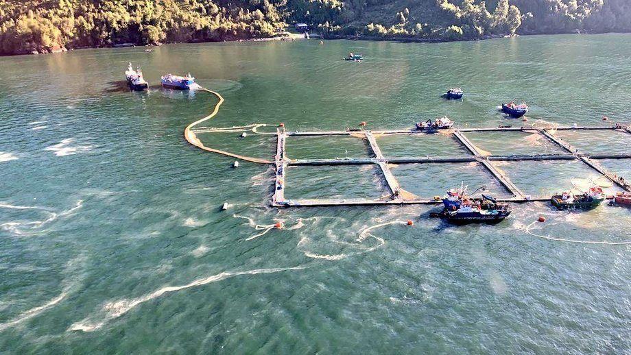 Sobrevuelo de Sernapesca a centros de cultivo de salmón del Fiordo Comau. Foto: Sernapesca.