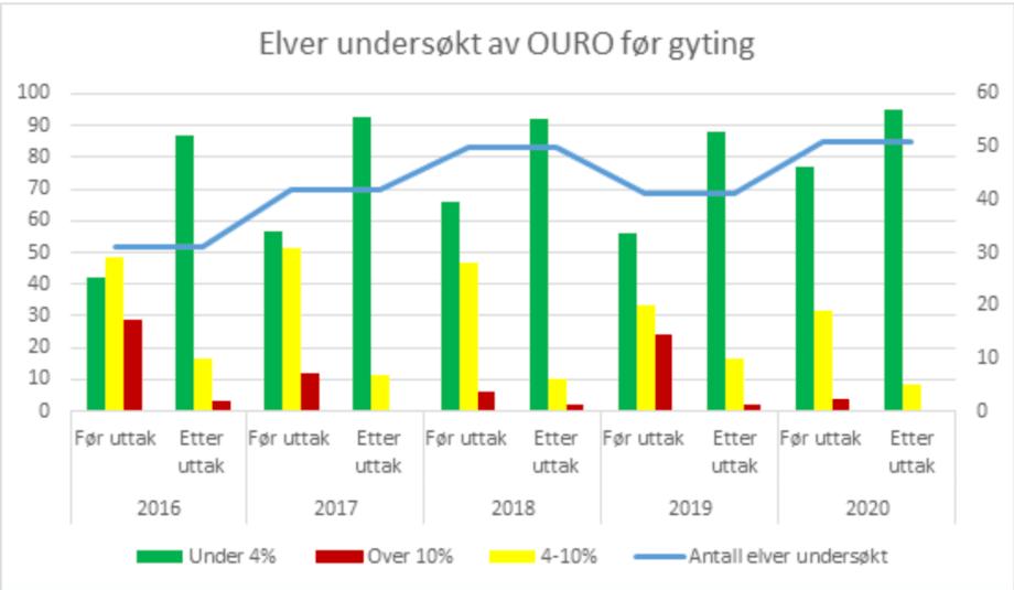 Figuren/grafen over viser prosentvist innslag av rømt fisk ved kartlegging før og etter uttak i utvalgte lakseførende elver i perioden 2016-2020.