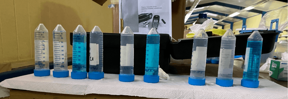 Water samples collected in the different tests for absorbance or optical density analysis.