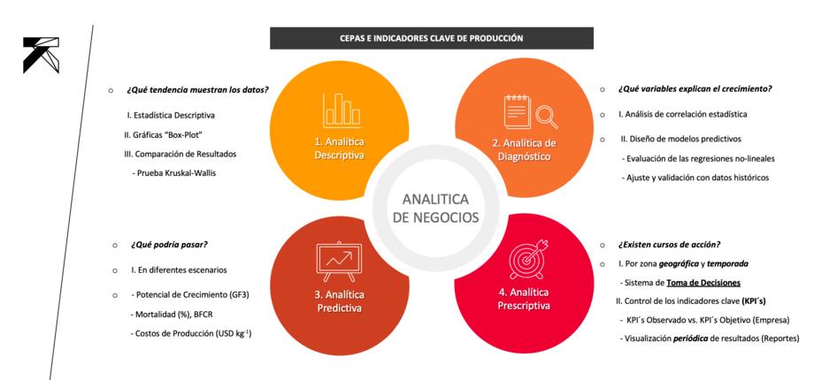 Figura 2: Analítica de Negocios (Business Analytics): Proceso metodológico y preguntas clave (Fuente propia, BGCL).